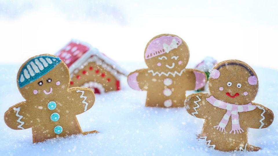 Gingerbreads in the snow