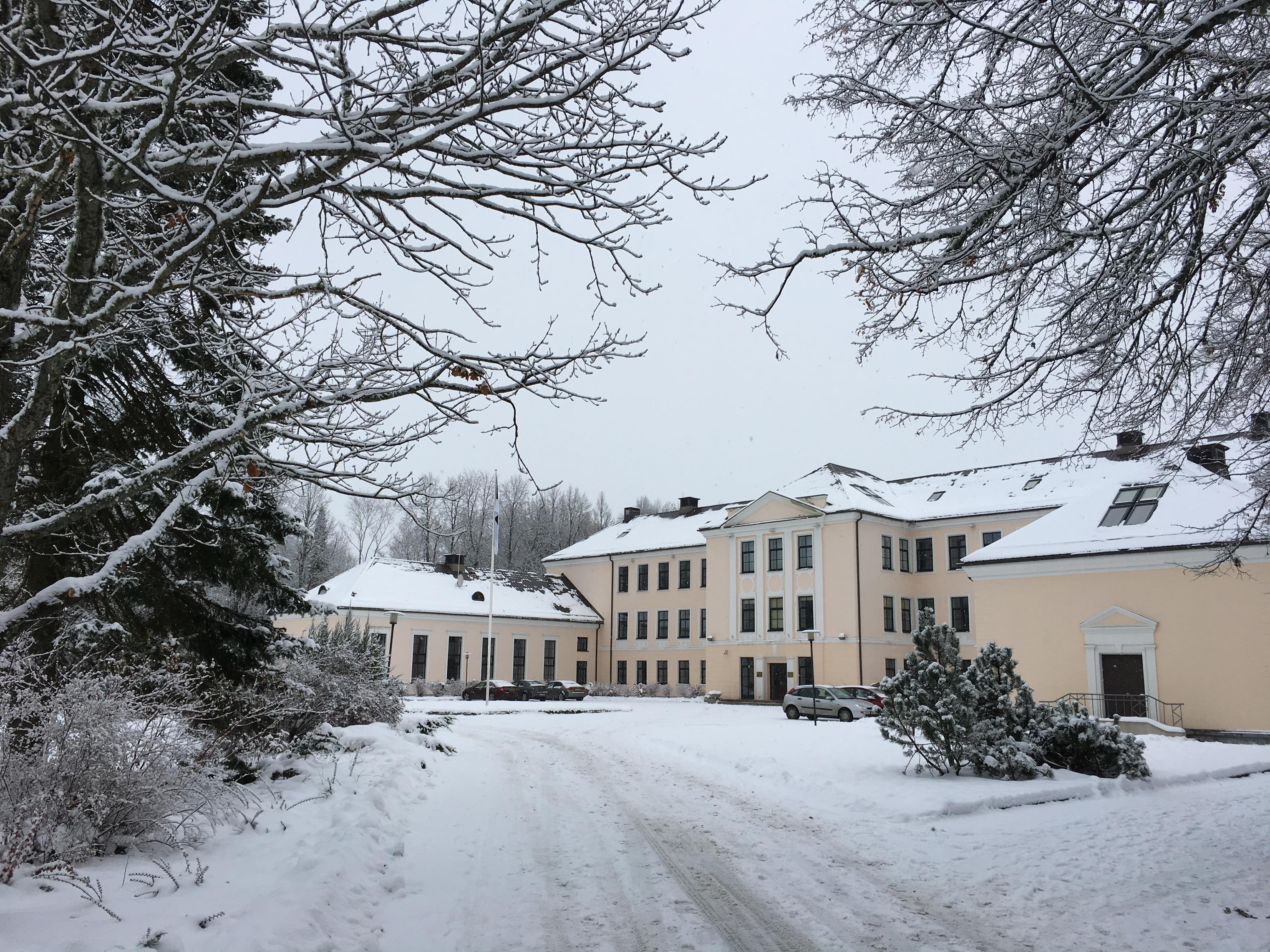 Vaade lumisele koolimajale läbi okste